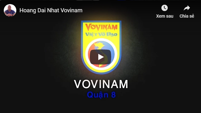 hoang-dai-nhat-vovinam-1