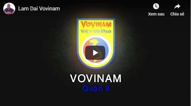 lam-dai-vovinam-2