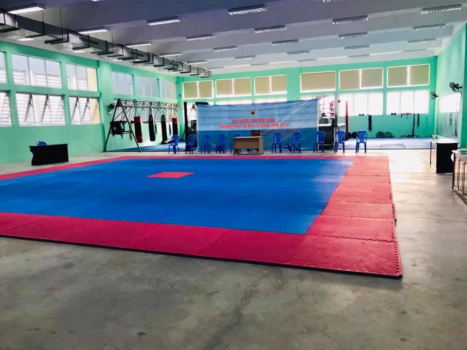 tap-huan-chuyen-mon-va-tuyen-chon-vdv-tham-du-giai-vo-dich-vovinam-toan-quoc-2019-11